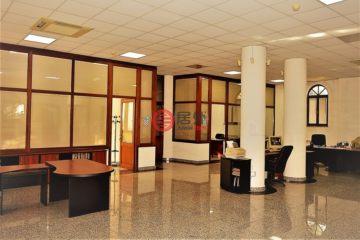 居外网在售罗马尼亚8卧7卫最近整修过的房产总占地401平方米EUR 890,000
