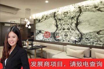 居外网在售新加坡1卧1卫新房的房产总占地587平方米SGD 1,457,000