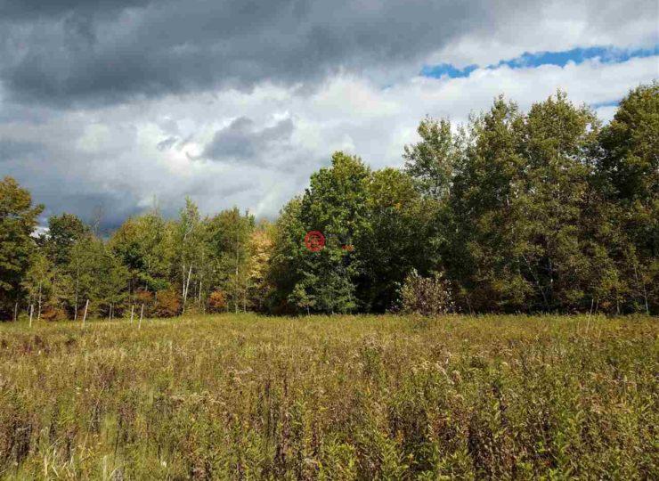 美国威斯康星州tripoli的房产,county road yy,编号43546830