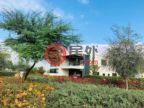 阿联酋迪拜迪拜的房产,达马克山庄 DAMAC Hills,编号57803328