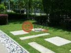 马来西亚柔佛Johor Bahru的房产,East Ledang,编号51694911