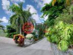 英属维尔京群岛的房产,Mango Manor,编号46224483