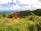 英属维尔京群岛的房产,Mayaba Land 221,编号47641951