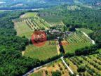 意大利SienaCasole d'Elsa的房产,编号56338672