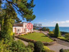 居外网在售爱尔兰9卧5卫的房产总占地20234平方米EUR 10,000,000
