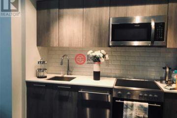 居外网在售加拿大多伦多的房产总占地32平方米CAD 399,000