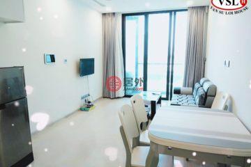 居外網在售越南Ho Chi Minh City1臥1衛的房產總占地25000平方米USD 708 / 月