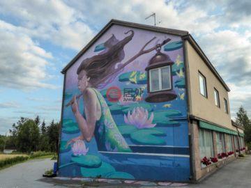 居外网在售芬兰KuhmoinenEUR 286,000总占地3000平方米的商业地产