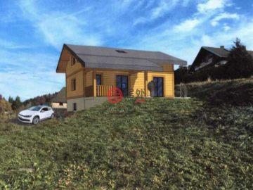 Bellevaux的房产